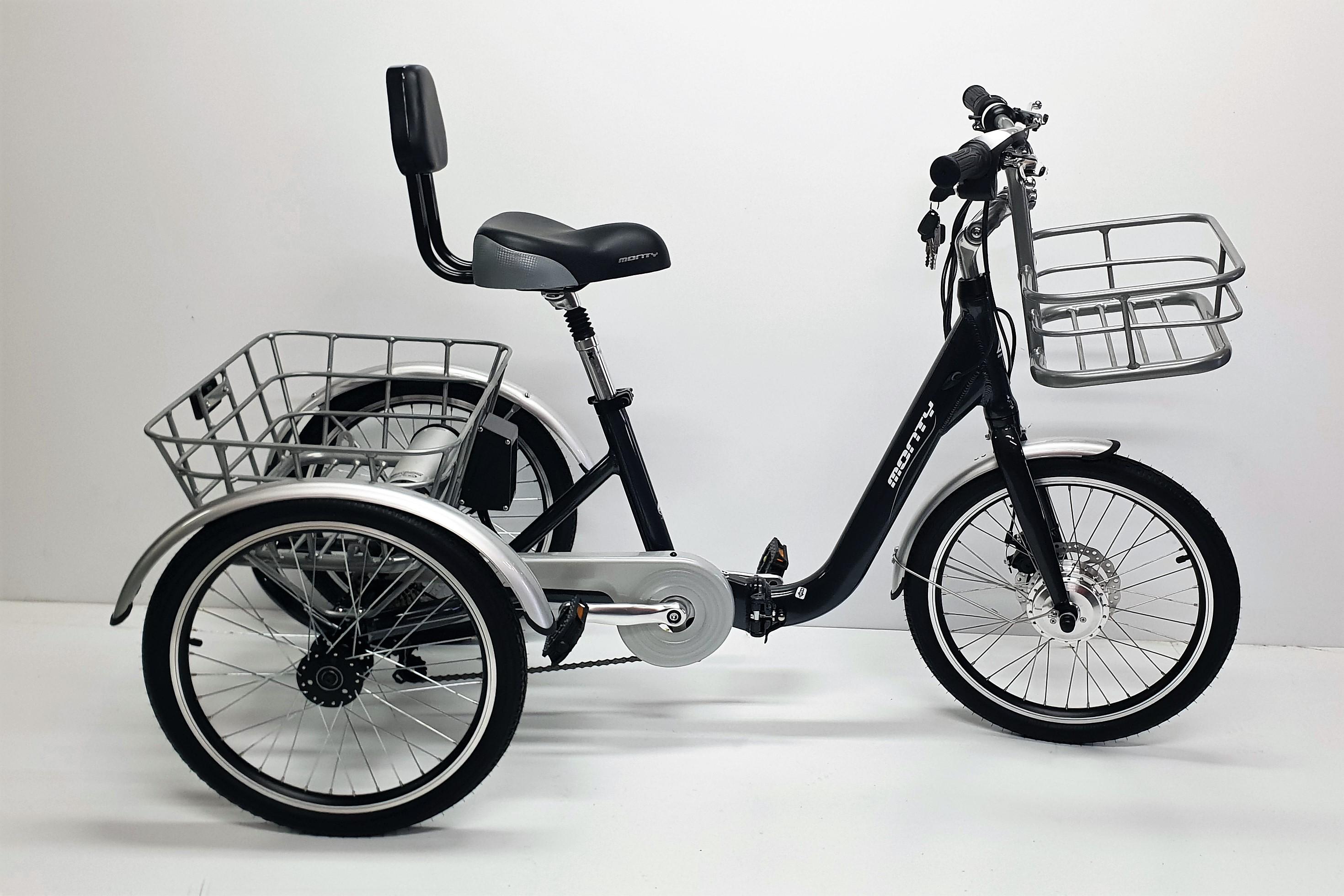 tricycle electrique monty veloland rixheim. Black Bedroom Furniture Sets. Home Design Ideas